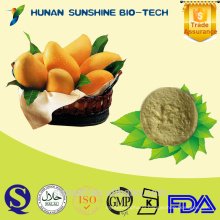 hot selling mango powder/mango juice powder/mango juice concentrate powder