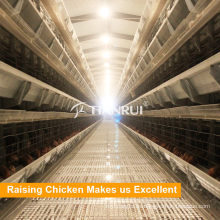 Hühnerhofschichtkäfige zum Verkauf in Simbabwe