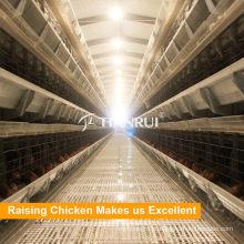 Gaiolas de camada de fazenda de frango para venda no Zimbábue