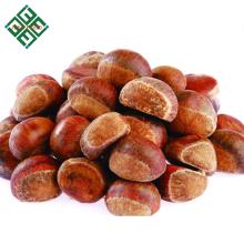 Shandong castanha fresca crua da china