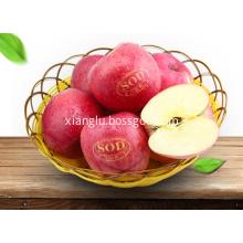 Fragrant foot organic apple 2017 fruit Fuji