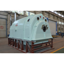10+Mw+Steam+Turbine+Generator