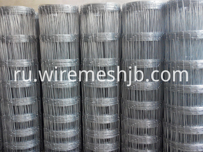 Hot-dip Galvanized Farm Fence