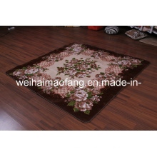 Raschel Mink Decoration Picnic Carpet (NMQ-CPT012)