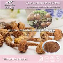 100% Natural Agaricus Blazei Extract Powder Polysaccharides 10%~50%