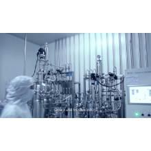 ZNSN Doxycycline HCL Polvo soluble