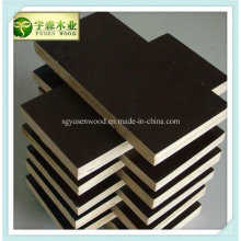 High Quality Film Faced Shuttering Plywood for Construction