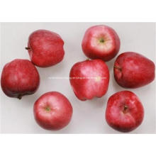 Köstlicher frischer Frucht-roter Stern-Apfel