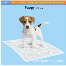 Best quality and factory for Pet Pad pet puppy pad 60x60cm supply to Slovenia Wholesale