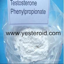 Testostérone crue saine Phenylpropionate 1255-49-8 de poudre de stéroïde