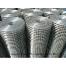 Galvanized Welded Wire Mesh-100′ in Roll