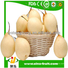 China Fresh fruit Pear best price bulk for sale