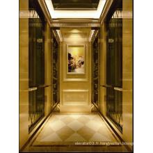 Ascenseur de passagers pour un hôtel de style classique