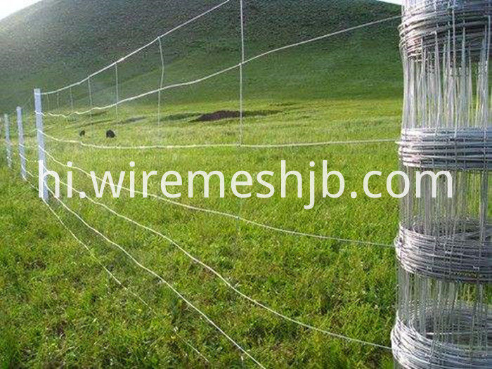 Galvanized Field Fence