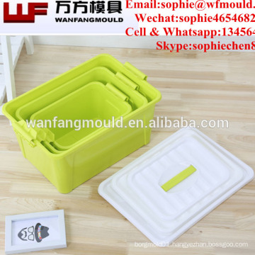 HOT SALE-Plastic injection large case mould for storage box Plastic injection container mold making