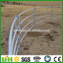 GM High quality hot sale galvanized pipe cattle fence