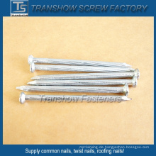 2,9 mm Twisted Shank Concrete Nails