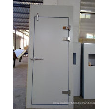 Full Sunk Hinge Door for Walk in Freezer