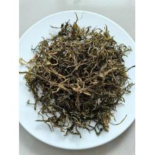 Getrocknete Meeresfrüchte Algen-Wakame-Stängel