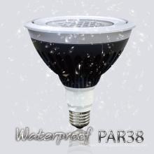 Waterproof IP67 20W / 25W PAR38 RGBW LED Accent Light avec ETL