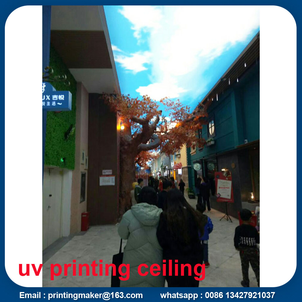 ceiling with full color printing