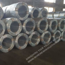 Electro Galvanized Iron Wire for Fence