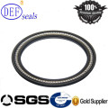 SUS 301 PTFE Spring Loaded Seals