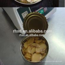 2017 лучшей шампиньонов вкуса консервов из Китая