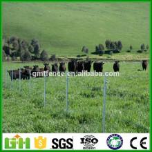Prix pas cher!!! Vente en gros de clôtures en vrac (vente chaude) / clôture de prairie (usine directe)