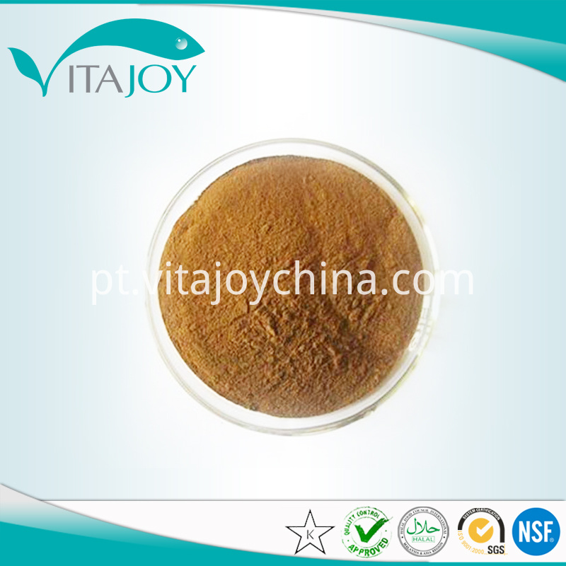 Organic Ginkgo leaf extract powder