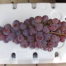 Fournisseur chinois de raisin mondial doux et frais