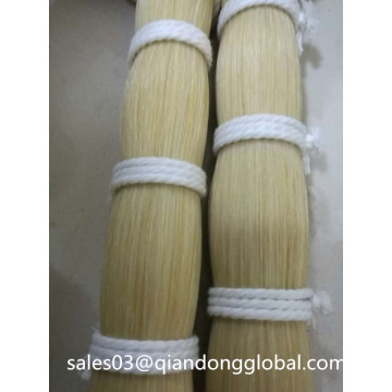 Hot Sale Horse Tail Hair