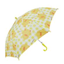 A17 parapluie parapluie droit