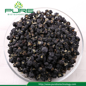 Grosir goji hitam berry / Wild Black Wolfberry
