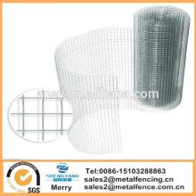 6mX900mm Quadrat galvanisierte Huhn-Kaninchen-Käfigfiletarbeit geschweißtes Draht-Vogelhaus-Zaunmasche