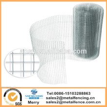 Cage de cage de poulet galvanisé carré de 6mX900mm filet de clôture de volière de fil soudé