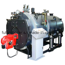 Industry Steam Boiler  (WNS4-1.25-Y. Q)