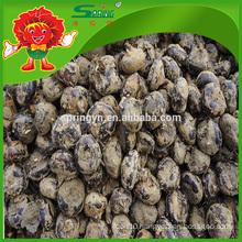 water chestnut rich nutrition vegetable chestnut