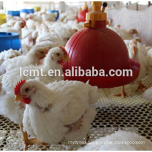 best price automatic chicken broilers raisng equipments