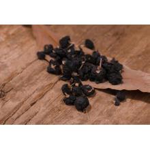 High Quality natural Chinese Organic Black Goji berries