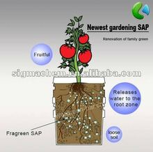 SAP (Super Absorbent Polymer)