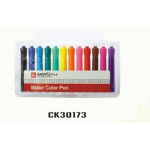 12PCS promotional jumbo water color pen