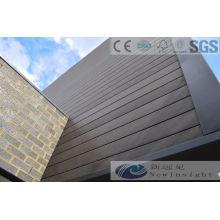 Panel de pared compuesto plástico de madera de 173 * 21m m