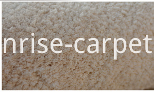 Microfiber Short Pile Carpet