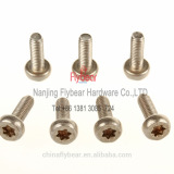 Stainless Steel 304 micro torx security screw bolts