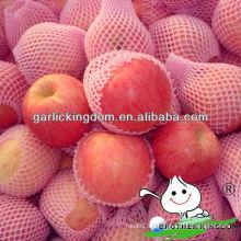 China nuevo cultivo rojo fuji manzana Reino hermano