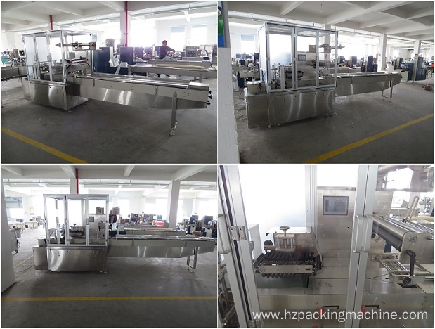 Pillow Pack Food Horizontal Automatic Packing Machine