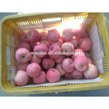 China Fresh Apple Fuji-red general 2017 crop