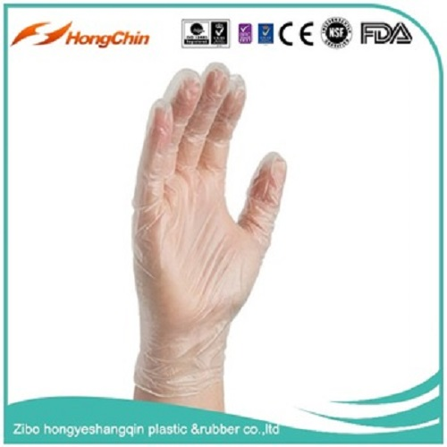 Clear Vinyl Glove