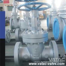 Vatac Wcb / Ss304 / Ss316cast Stahlschieber mit RF / Rtj